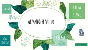 Alzando_vuelo02